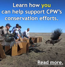 Support conservation efforts button