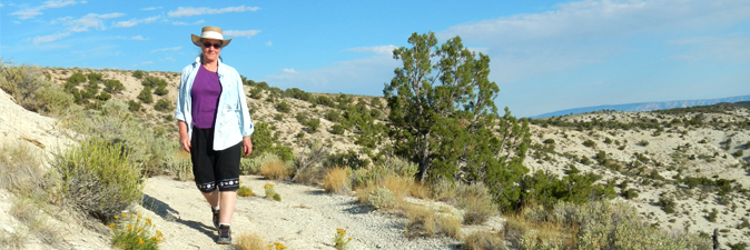 Volunteer walking across sandy hills dotted with shrub brush and juniper.