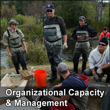 Organizational Capacity and Management