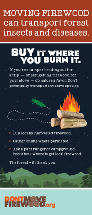 Buy it where you burn it: Moving firewood can transport problem insects and diseases flyer.