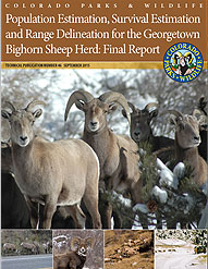 Bighorn Sheep Report Cover