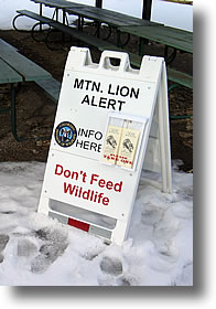 'Lion Alert' neighborhood sign.