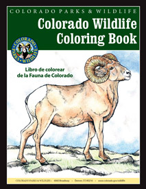 Cover of the Colorado Wildlife Coloring Book.