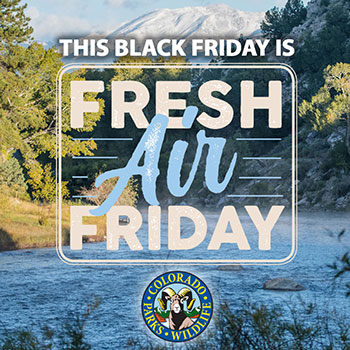 Fresh Air Friday logo