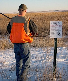 Pheasant hunter on walk-in access property
