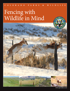 Cover image of Fencing with Wildlife in Mind