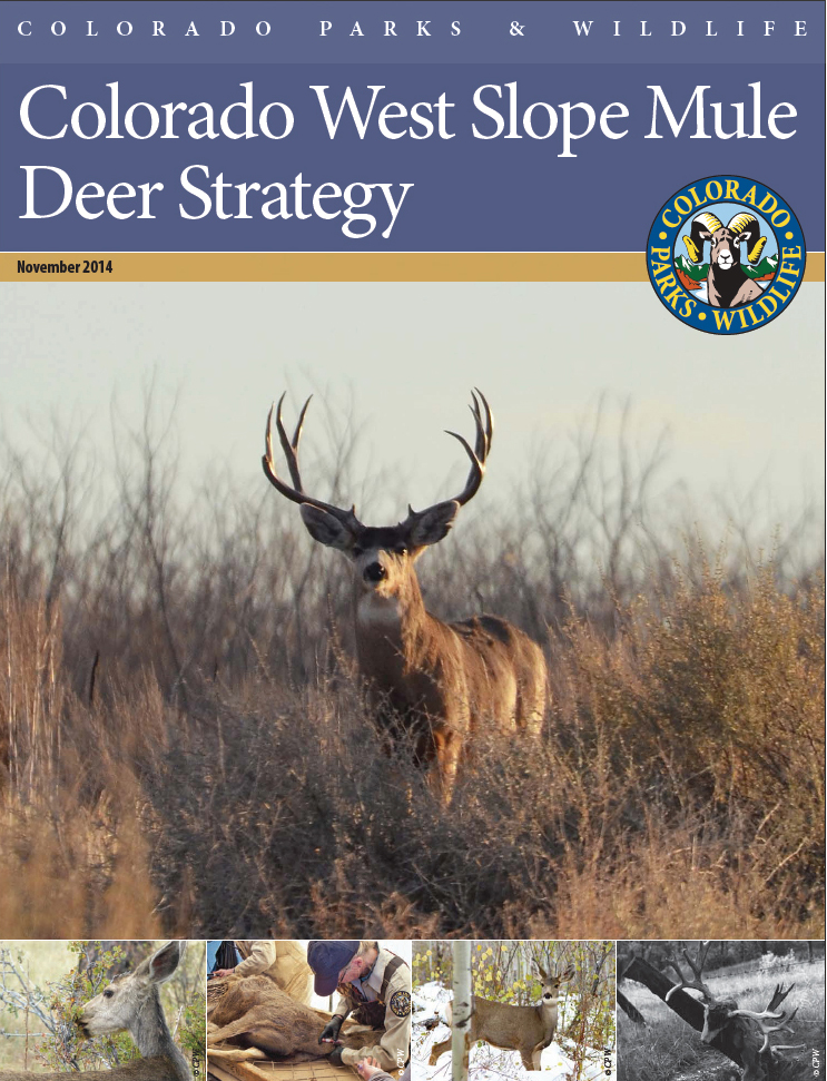 Draft Mule Deer Strategy