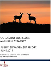 Public Engagement Report Cover