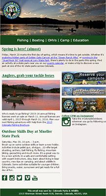e-newsletter snapshot
