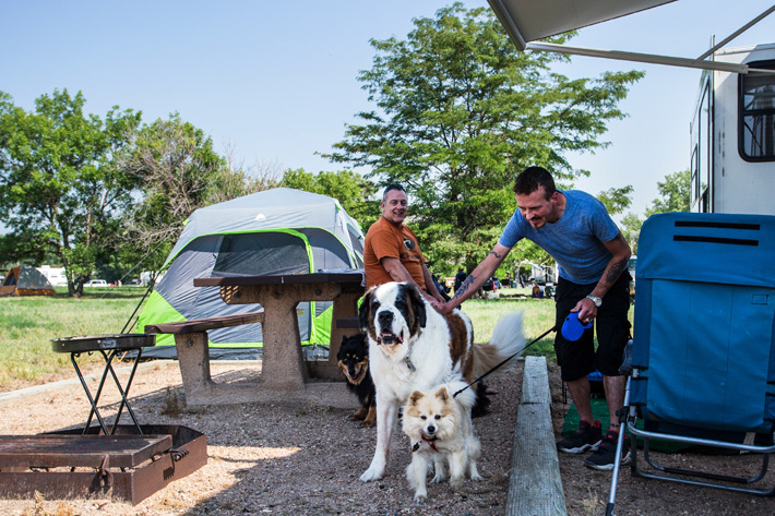 Two men and three dogs at campground