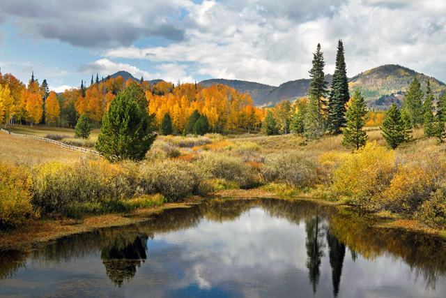 A confetti of fall colors at Steamboat Lake State Park.