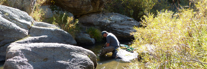 Man gold panning in creek