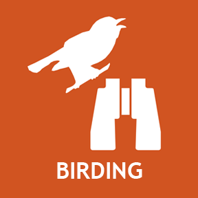 Suggested birding spots.