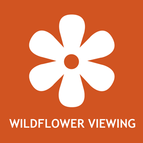 Spring wildflower viewing information.