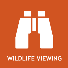Wildlife viewing information and events.