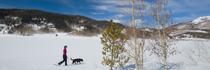 woman and dog snowshoeing