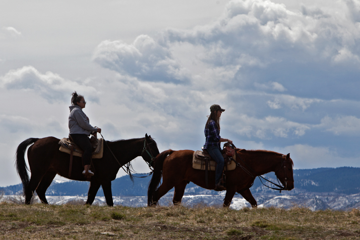 Horseback Riding in Chatfield State Park