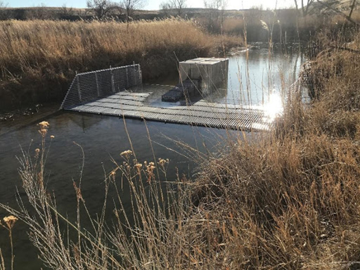 A resistance board weir and fish trap in Roubideau Creek
