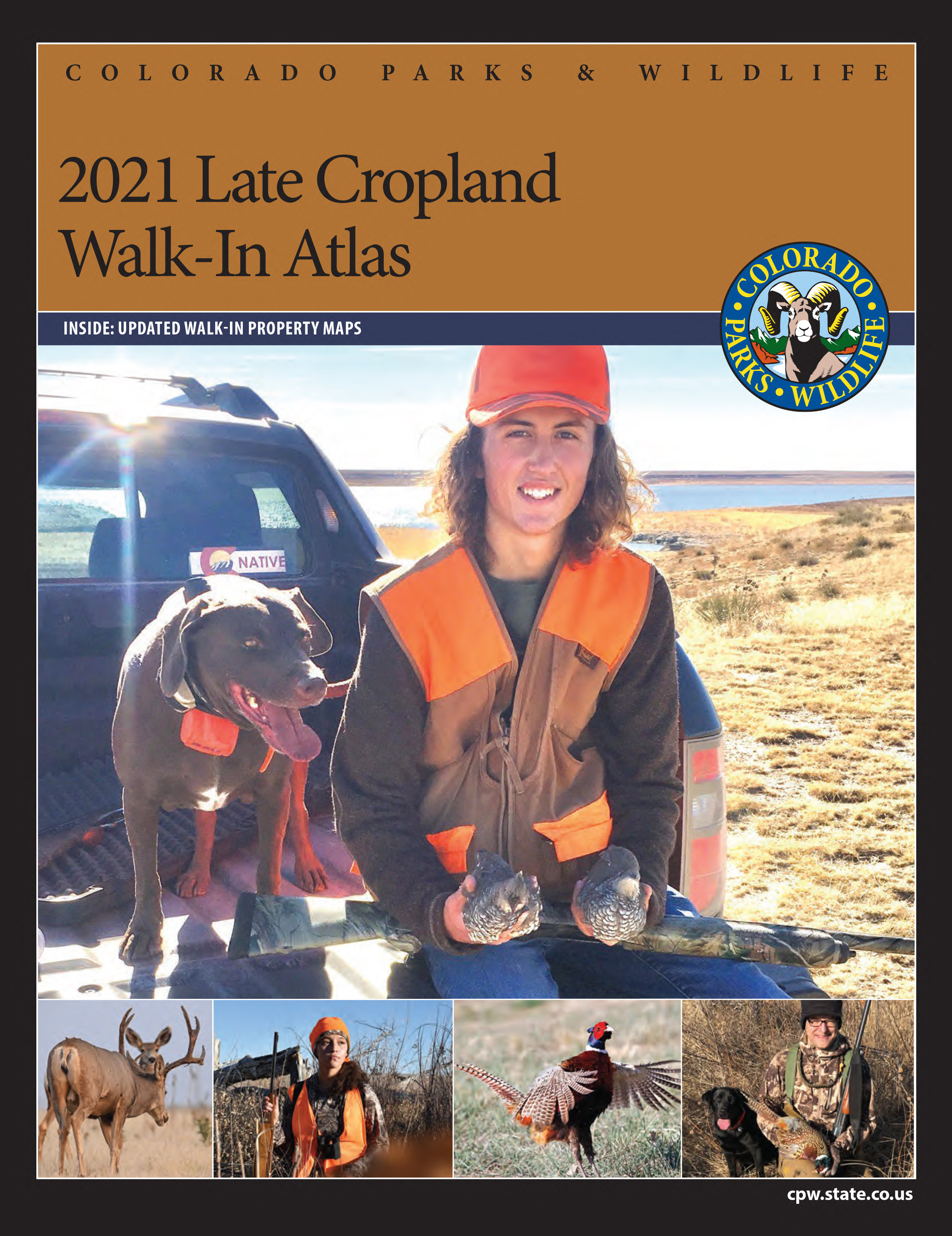 Late Cropland Brochure