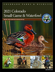 Small Game and Waterfowl brochure cover