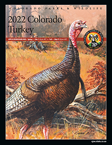 ​Turkey brochure