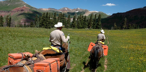 Colorado Parks & Wildlife Officers