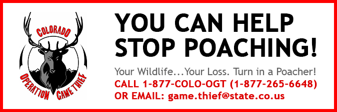 Report poaching anonymously to Operation Game Thief.