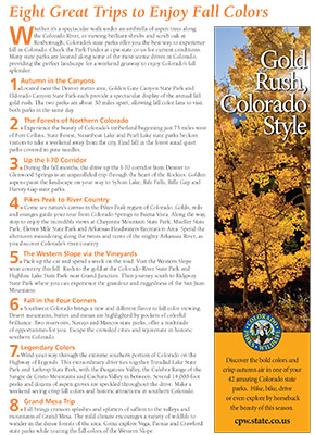Gold Rush, Colorado Style​ Flyer