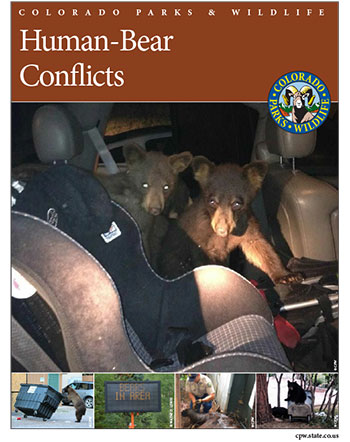 Cover of human-bear conflicts brochure