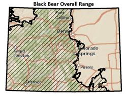 Colorado Parks Wildlife Species Profiles - Us-black-bear-population-map