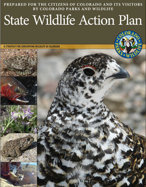 Colorado State Wildlife Action Plan Cover