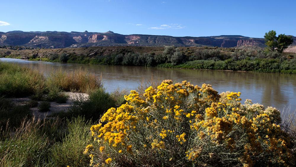 Colorado Parks & Wildlife - James M. Robb Colorado River