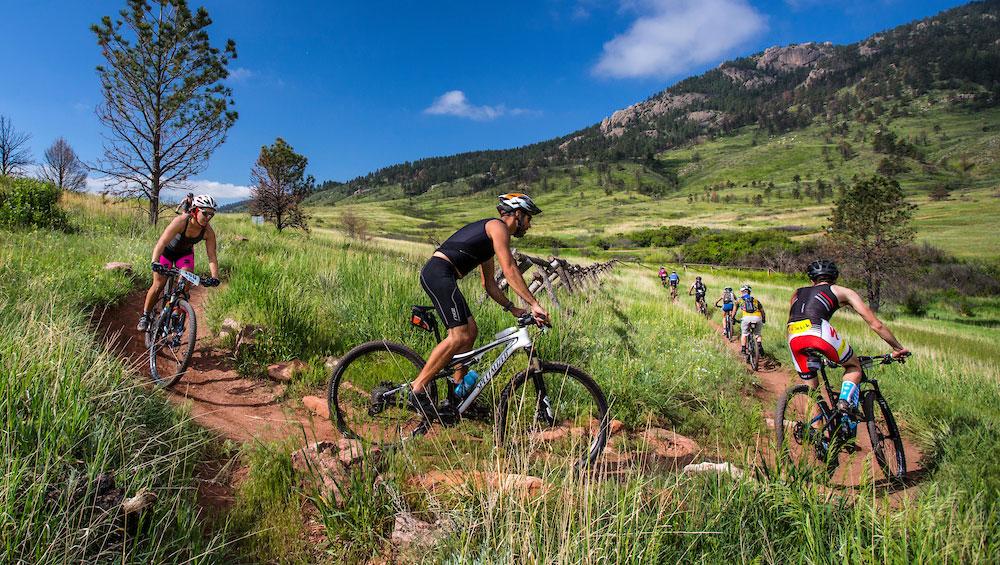 Colorado Parks Wildlife Lory