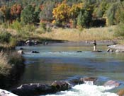 Fly fishing on Uncompahgre by Jennifer Loshaw