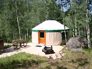 Yurt in wooded area