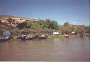 Boats docked in Duffy Canyon