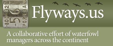 Flyways logo